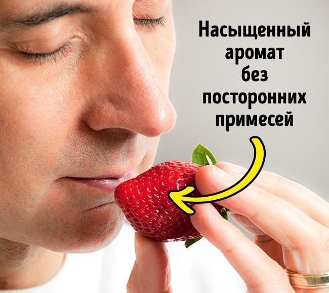 5 признаков, по которым вкусную клубнику можно отличить от «пластиковой»