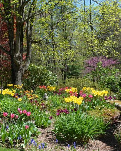 Классический Сад by Christensen Landscape Services