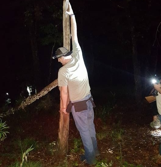 Полиция Южной Каролины запретила стрелять в йети, считая его человеком в костюме гориллы