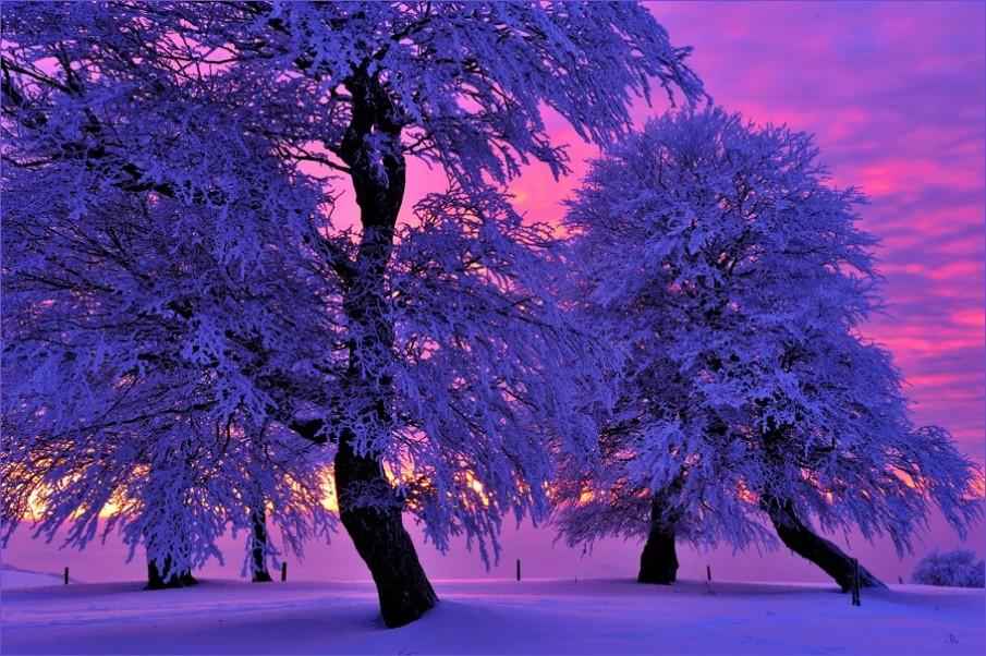 традиция казахов картинки зимний пейзаж цветов цены, купоны