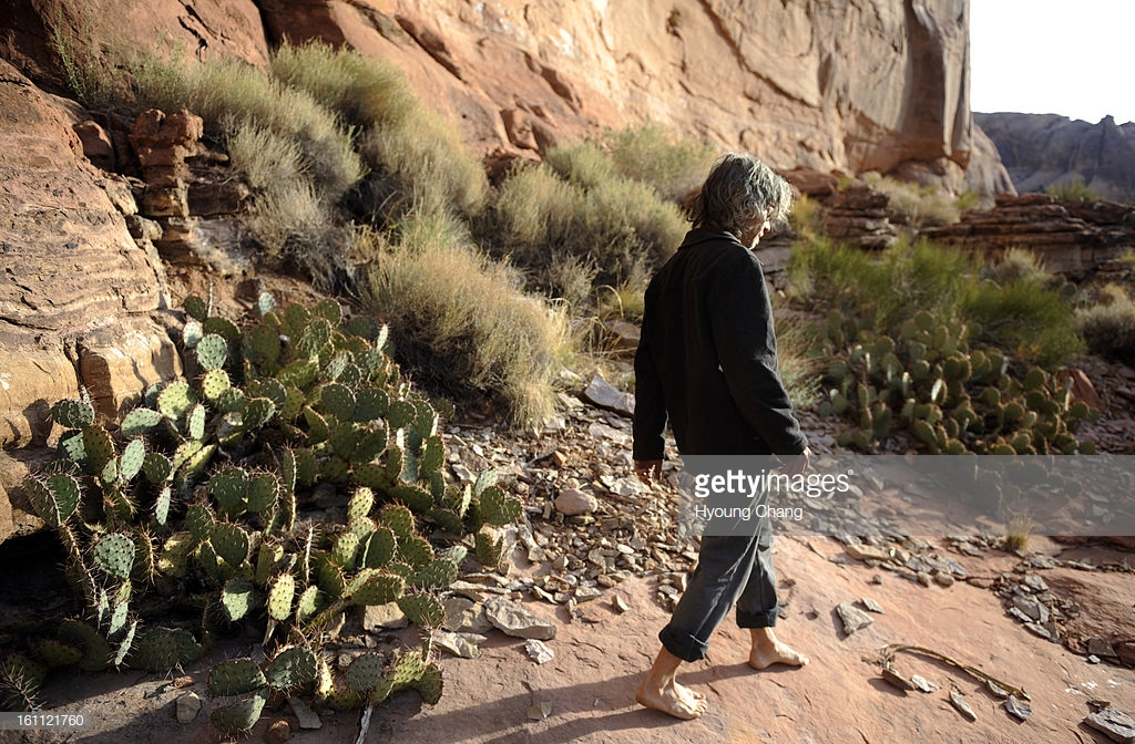 (KL)Daniel Suelo is looking for leaves for the moring tea by his cave in Moab, UT. Suelo had a CU Masters degree in accounting and a promising career in 2000 when he began what he calls 'an experiment.' Since that time nine years ago, he has lived without : News Photo
