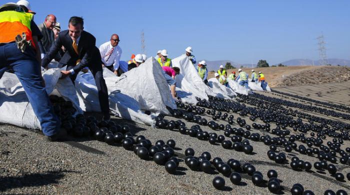 «Черное поле»: зачем власти Лос-Анджелеса высыпали 96 млн шаров в водохранилище водохранилище,Лос-Анджелес,удивительное