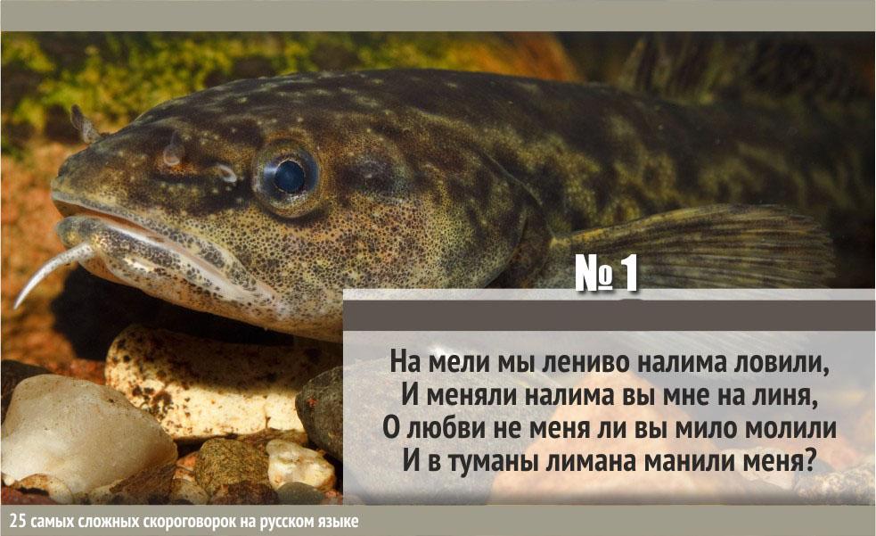 Зубодробительные скороговорки русского языка