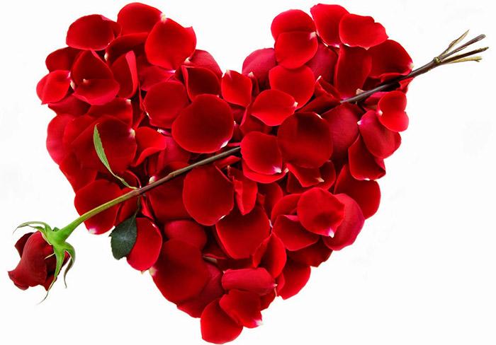 Цветы на 14 февраля – День Святого Валентина (День всех влюбленных)