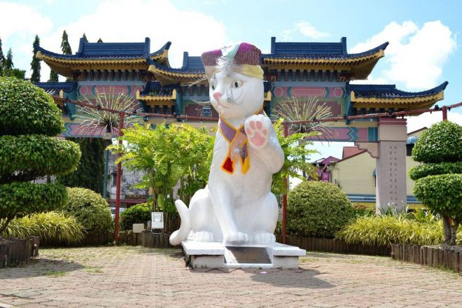 Любители котиков обязаны посетить этот город