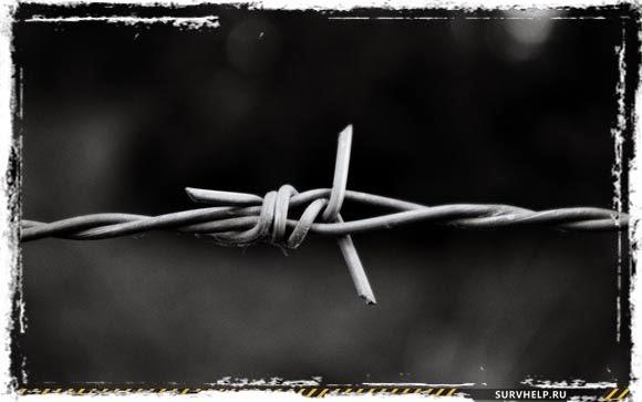 Заграждения из колючей проволоки