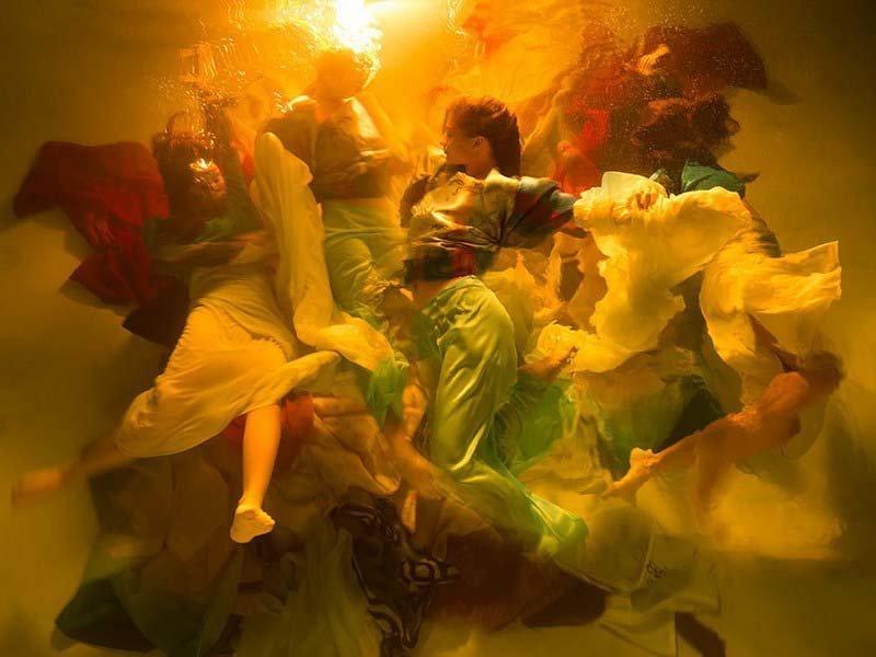 Эти потрясающие подводные фотографии похожи на драматические картины в стиле барокко