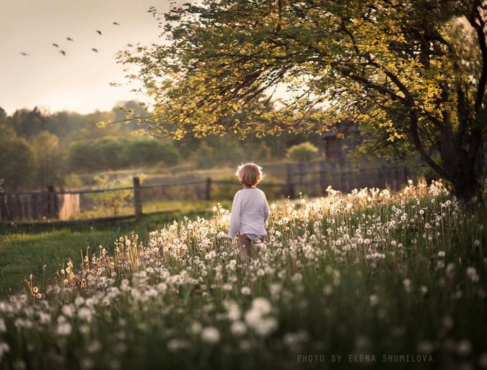 можете выбрать лето в картинках про жизнь еще