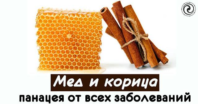 Мед и корица - панацея от всех заболеваний