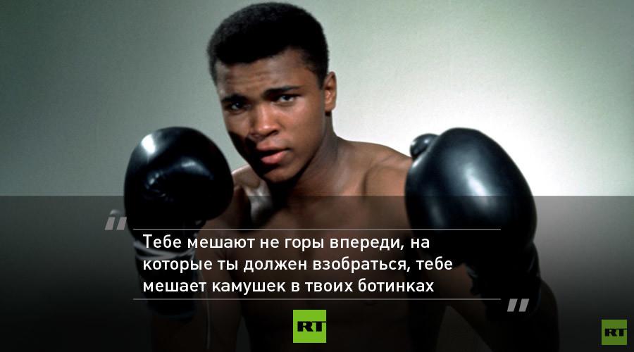Надписью пожизненно, картинки о боксе с цитатами