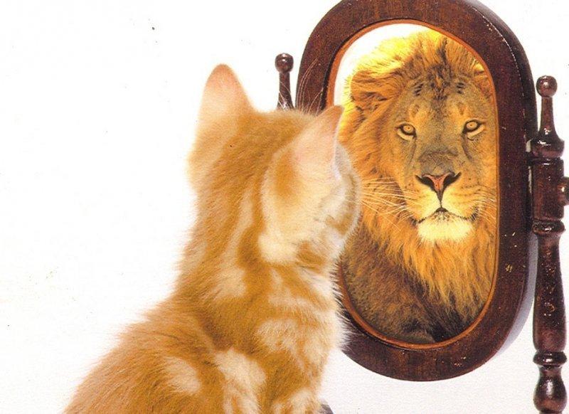 Как можно повысить уверенность в себе