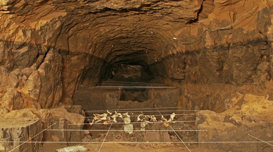 Виртуальное зрениеЧтобы пробиться сквозь толщу вековых стен археологи воспользовались технологией 3D визуализации электрической томографии. Идея проверить давно известную пирамиду заново пришла в голову главному научному сотруднику экспедиции, Рене Чавесу Сегуру. Правда, Сегуру намеревался таким образом лишь проверить толщину видимых стен — и очень удивился, обнаружив на экране сканера потайное помещение.