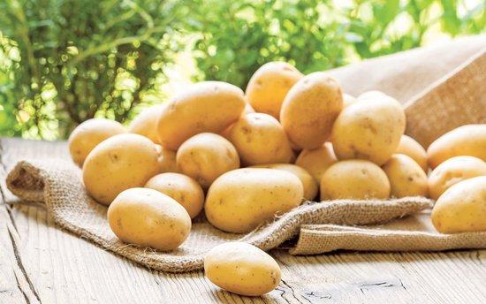 Китайский метод посадки картофеля, который обеспечивает потрясающую урожайность