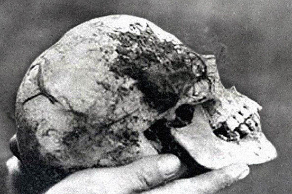 кто положил беллу в ведьмин вяз? самое загадочное убийство англии отвратительные мужики disgusting men