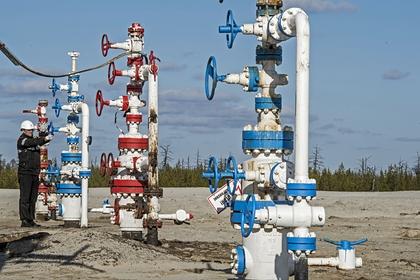 В России запатентовали новый метод добычи трудноизвлекаемого газа Экономика