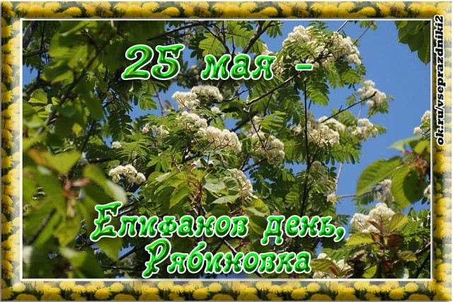 25 мая Рябиновка (Епифанов день).