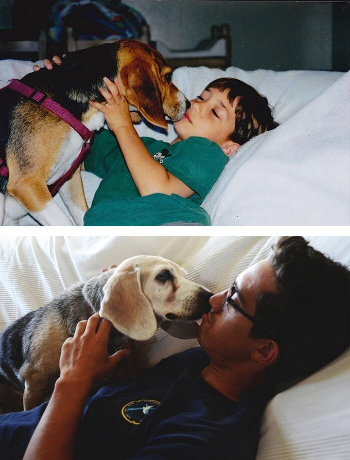 Сердце разрывается: первые и последние фотографии хозяев с их питомцами грустно, животные, история, фотографии