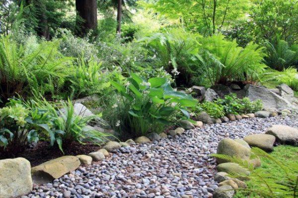 Идеи стильного сада с бордюрами