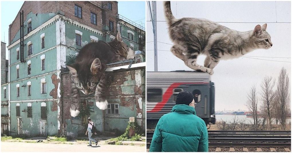 Художник показывает, как бы выглядела Земля, если бы кошки были гигантскими