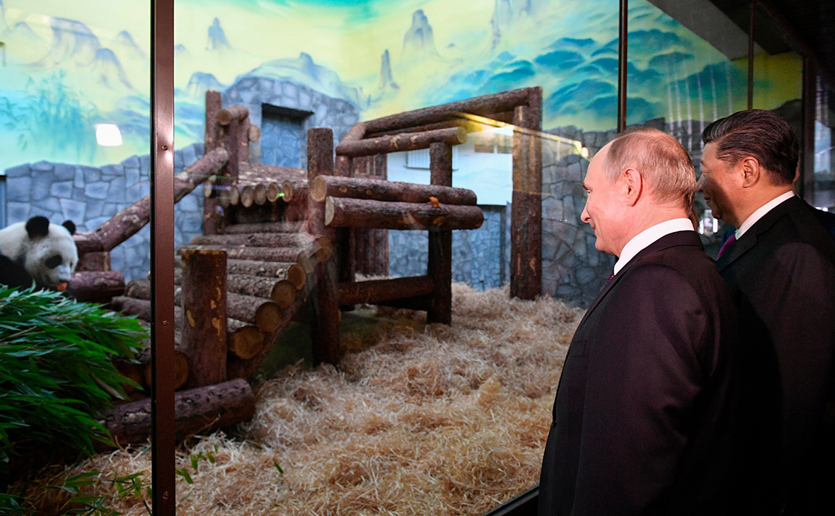 Картинки по запроÑу путин и панды риа новоÑти
