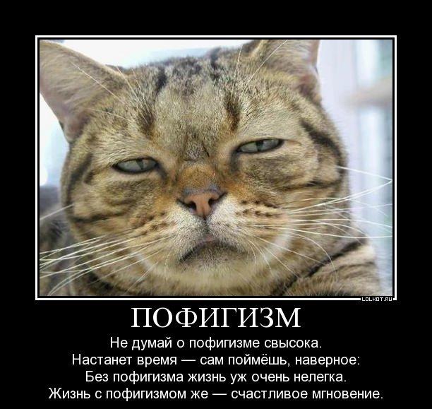 Россия - территория пофигизма