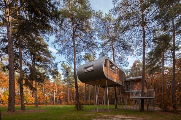 Домики на деревьях: 9 лучших