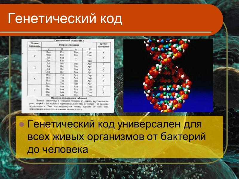 Генетический код картинка