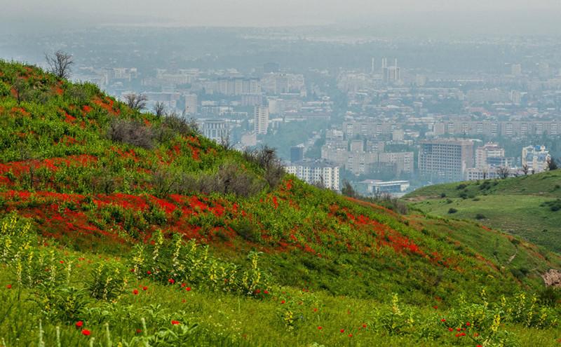 3. Вид на столицу Кыргызстана art, Кыргызстан, пейзаж, ссср, факты