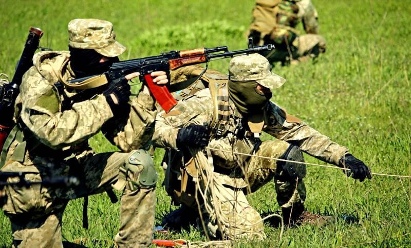 Позор спецназа: История провальной вылазки украинской ДРГ