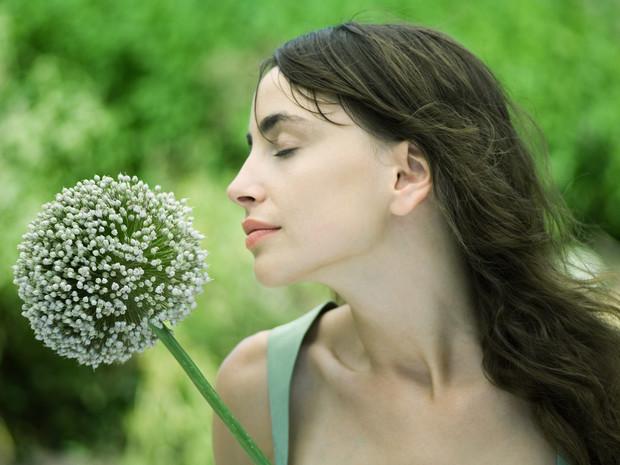 Что будет, если есть по зубчику чеснока каждый день здоровье,красота,питание