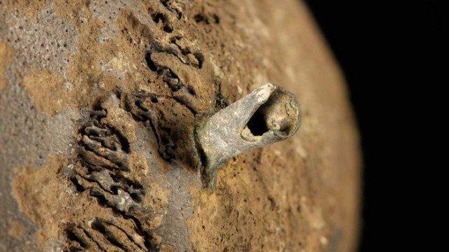 Другой ракурс история, мумии, наука, скелеты