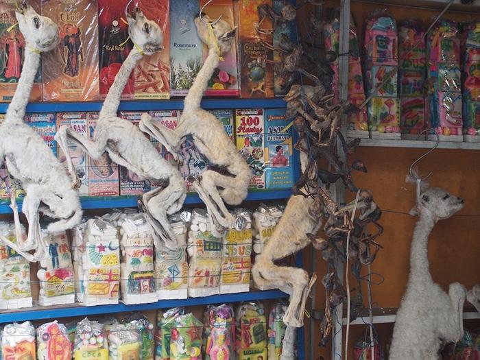 Рынок для ведьм в Ла-Пас