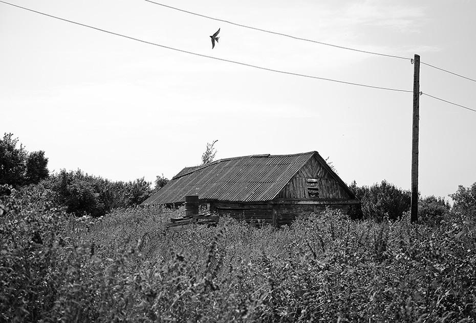 Забытая российская деревня на атмосферных снимках Павла Капустина