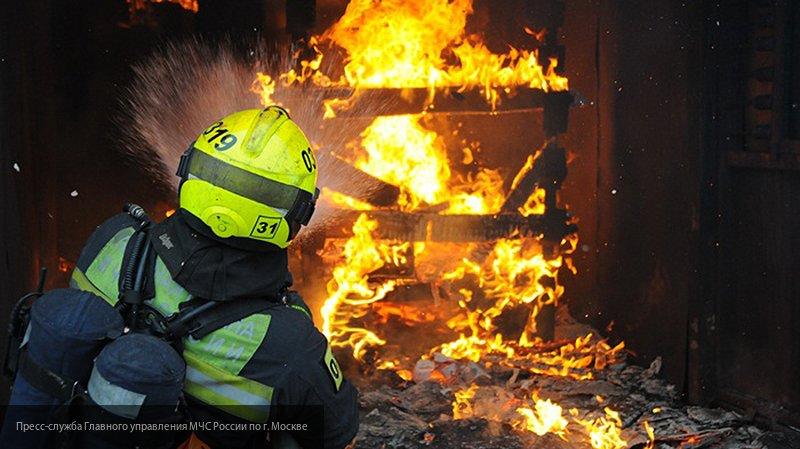 МЧС опубликовало видео пожара в Томской области