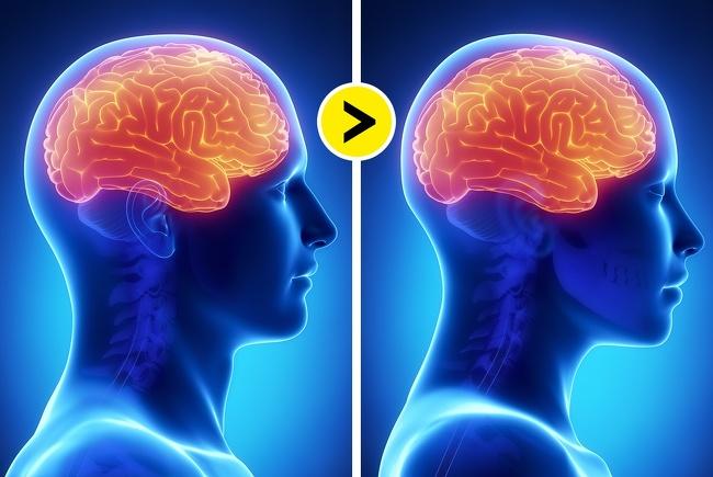 Стереотипы, которые пора забыть: 7 научно доказанных фактов о мужском и женском мозге