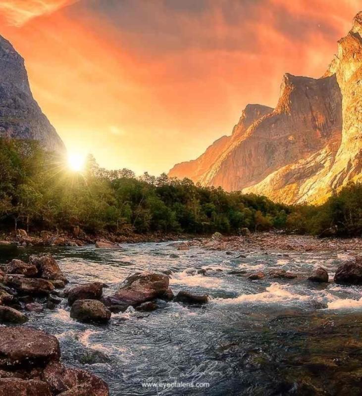 Краски мира в ярких пейзажах Имона Галлахера