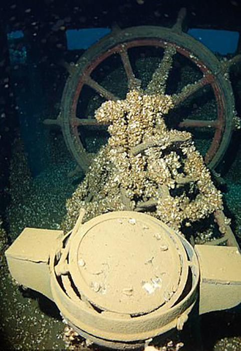 Manasoo провел под водой 90 лет, прежде чем его нашли.