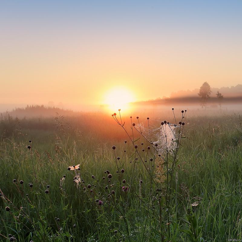 Скоро июль. Июльское утро от Uriah Heep
