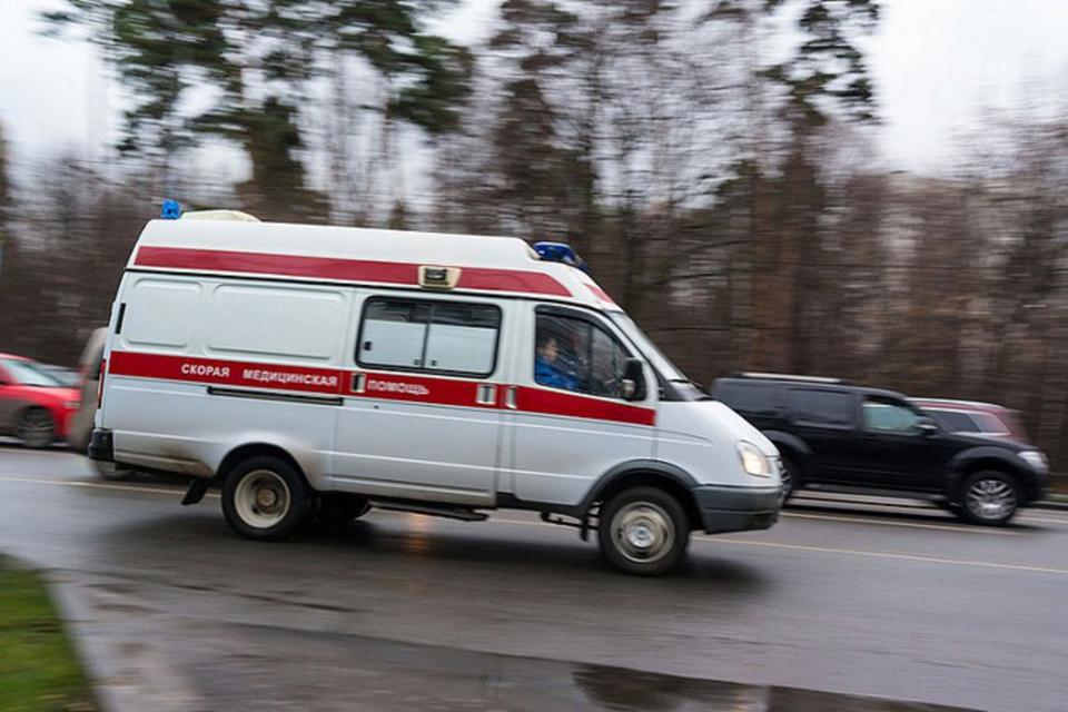 Пять человек найдены мертвым…