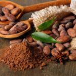 Виноград и какао внесли в список мощных антивирусных средств