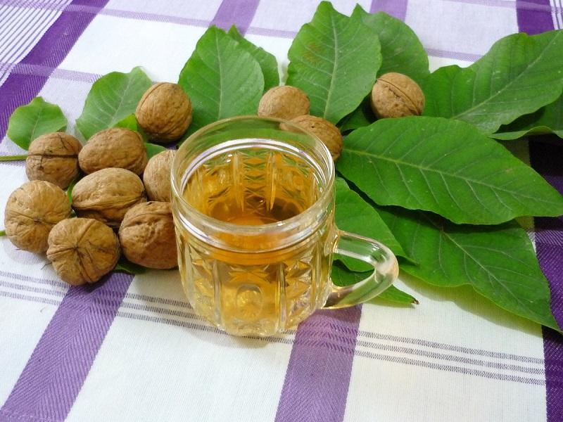 сухие листья грецкого ореха