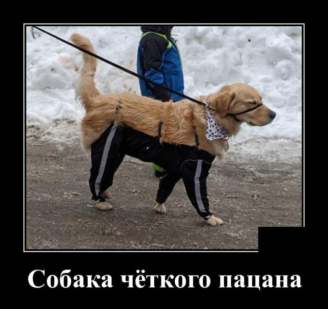 Улыбайся почаще, но когда никто не видит.. анекдоты,веселье,демотиваторы,приколы,смех,смешные картинки,смешные рисунки,юмор