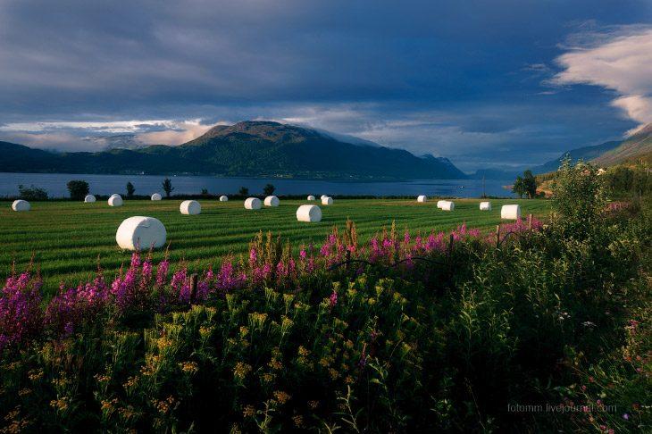 Любуемся потрясающей Норвегией в период белых ночей