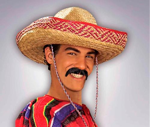 Мексиканцам разрешили занима…
