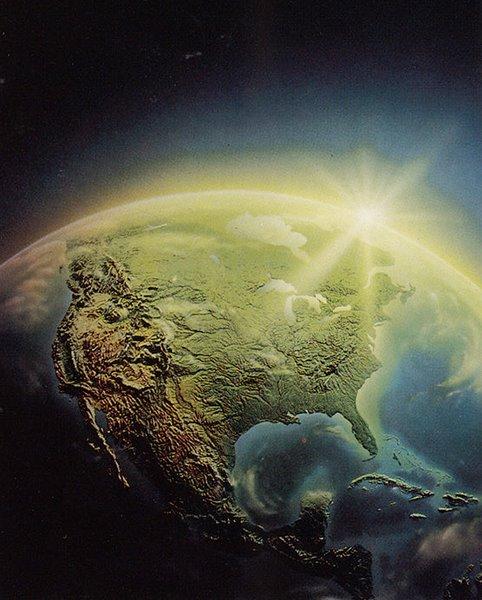 Ученые нашли тревожные симптомы нового массового вымирания на Земле.