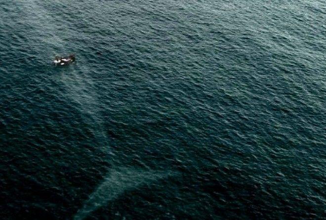 12 фото глубин океана, которые напрочь отобьют желание заниматься дайвингом