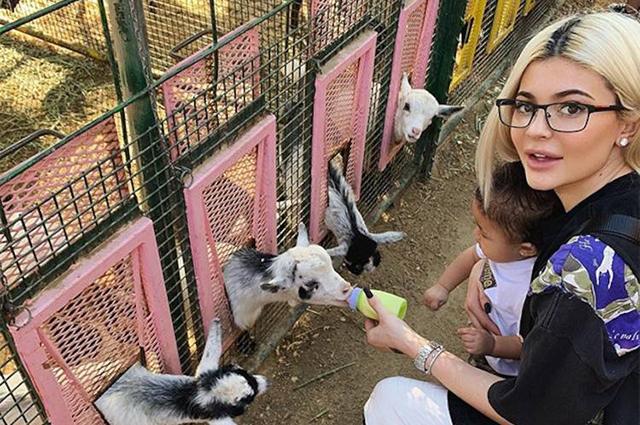 Кайли Дженнер с дочерью Сторми и Трэвисом Скоттом устроила незабываемый отдых на ферме