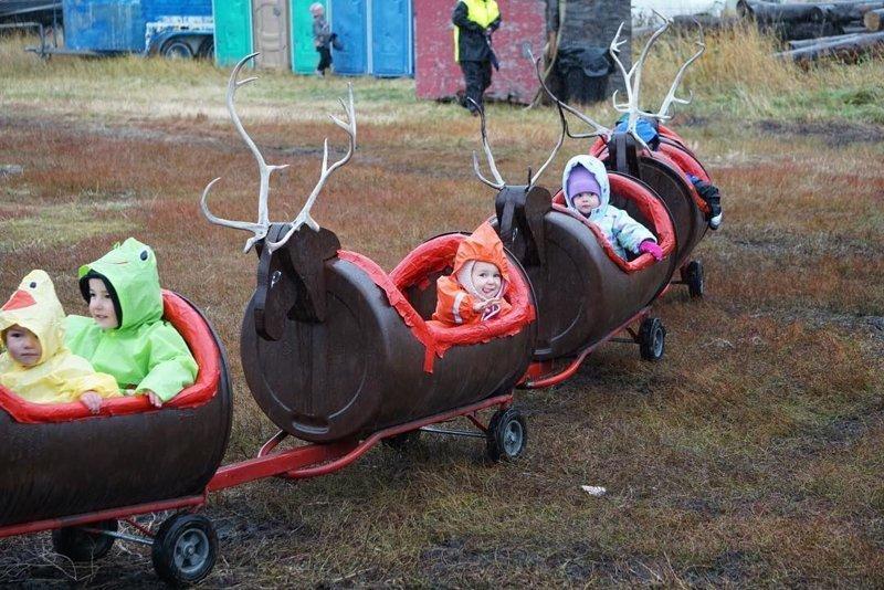 Веселые карусели аляска, жизнь, лось, медведь, путешествие, сова