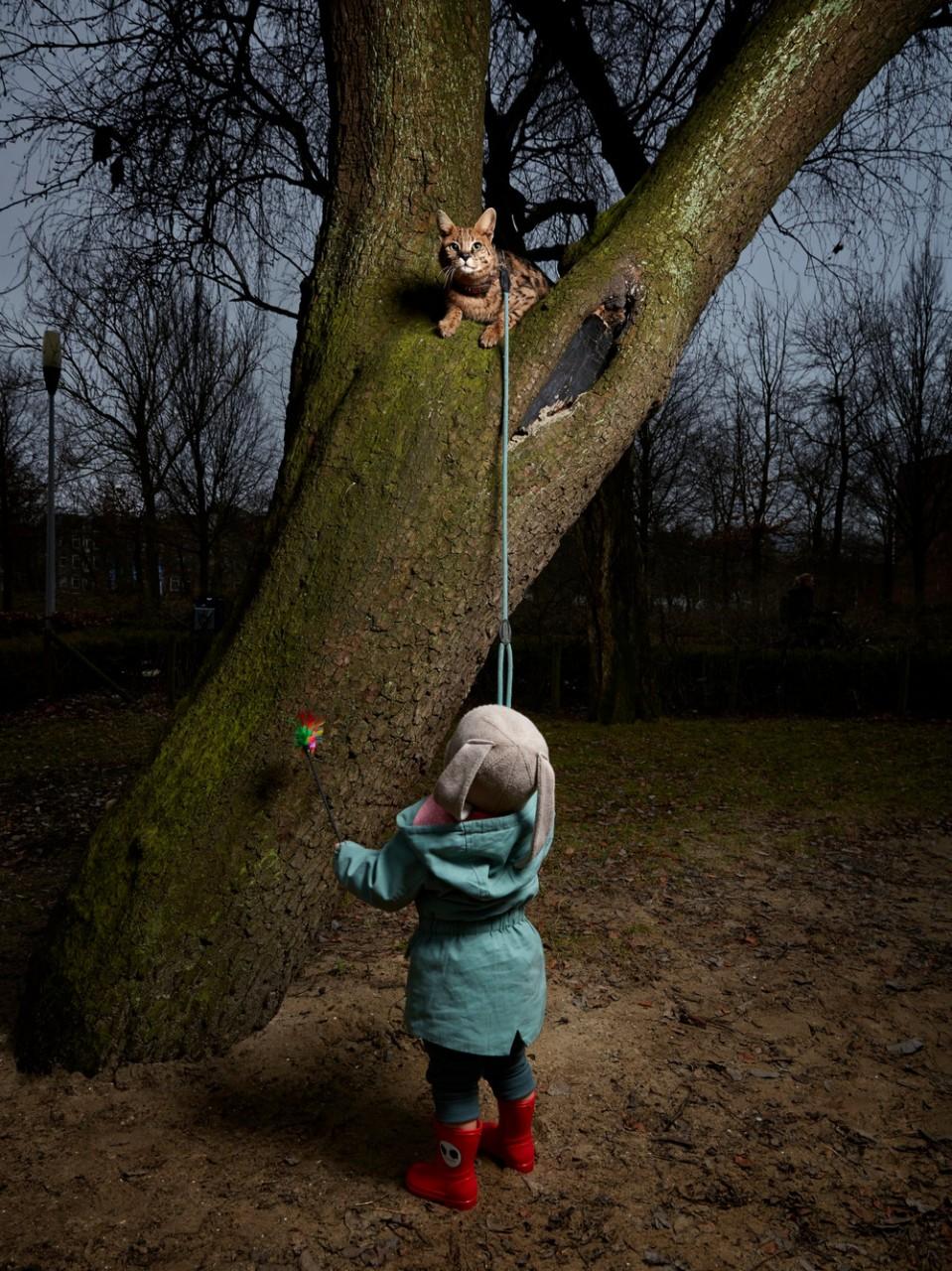 Портреты амстердамских домашних животных. Фотограф Изабелла Розендал 10