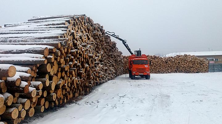 Кто вырубает русский лес? Часть 1: Залысины на таёжном ковре Красноярском, рублей, процентов, Давыденко, которого, трети, древесины, только, уходят, Китай, лесов, когда, всегда, семьи, ничего, всего, очень, миллионов, тайга, запасы